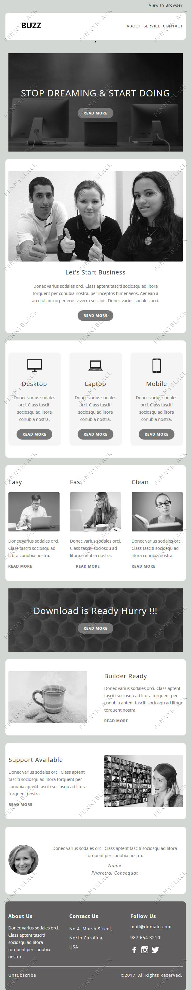 Buzz - Responsive Email Template