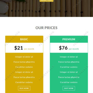 SPA - Responsive Email Template
