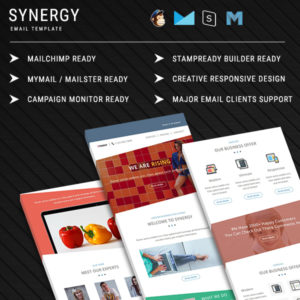 Synergy  - Responsive Email Template