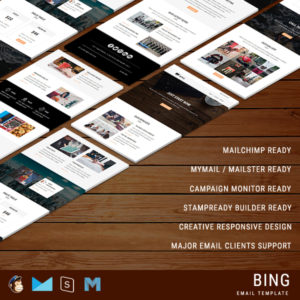 Bing - Responsive Email Template