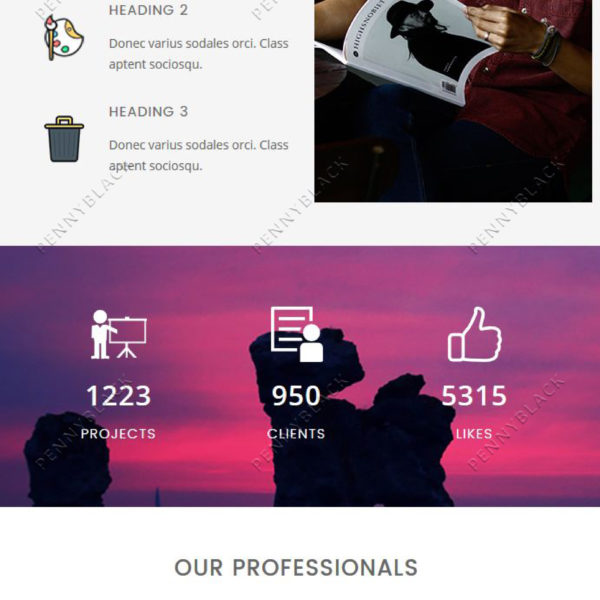 Meow - Responsive Email Template